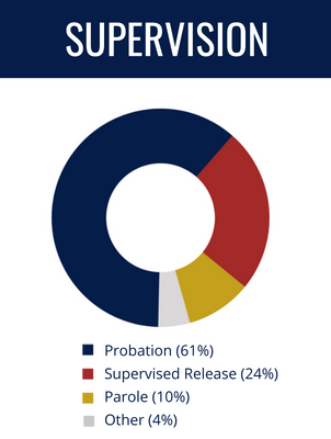 Supervision Types: Probation (61%), Supervised Release (24%), Parole (10%), Other (4%)