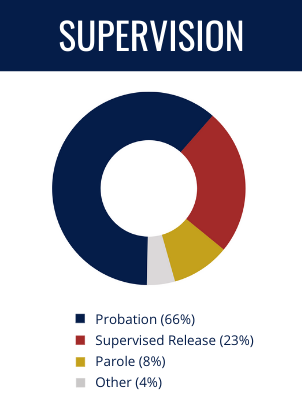 Supervision Types: Probation (66%), Supervised Release (23%), Parole (8%), Other (4%)